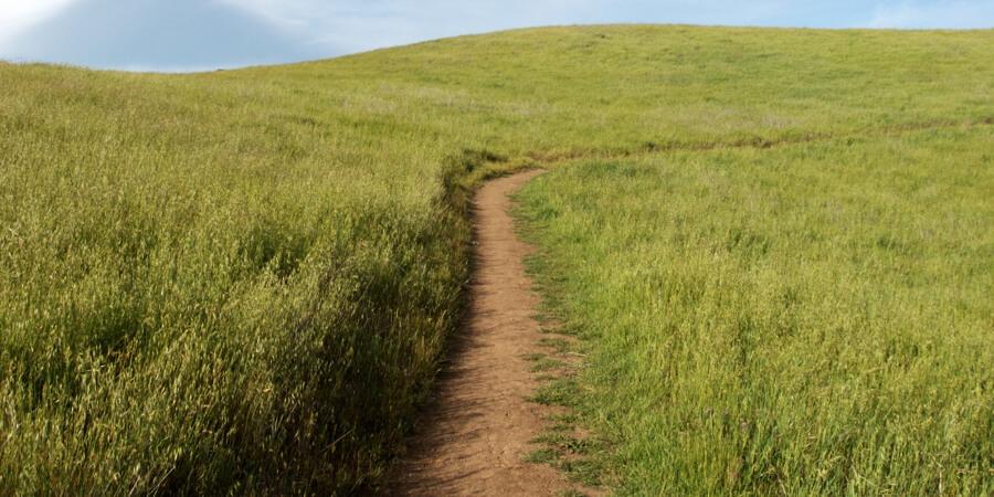 camino_felicidad